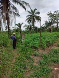 Land for sale Omademe, Omagwa, near Port Harcourt International Airport Ikwerre Rivers