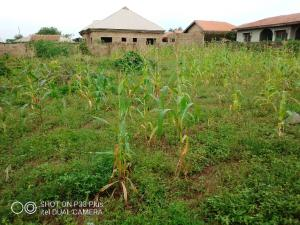 Residential Land Land for sale 2 plots of land fenced & gated at fola Tyre area oyo.   Oyo Oyo
