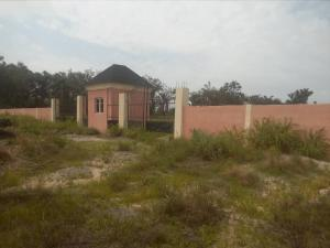 Commercial Land Land for sale Opposite Green Estate Apple junction Amuwo Odofin Lagos