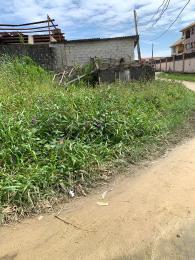 Residential Land Land for sale Olokonla Ajah Lagos