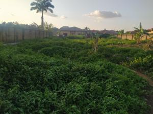 Residential Land Land for sale Ibrahim street, Ajinde road, Odo ona elewe Ibadan  Akala Express Ibadan Oyo