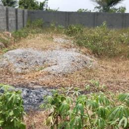 Residential Land Land for sale Igbopa, Oreta, Ikorodu Ikorodu Lagos