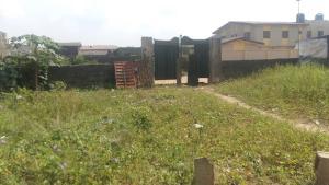 Residential Land Land for sale Elepe Royal Estate Aga Ikorodu Ikorodu Lagos