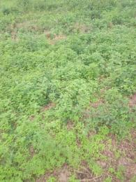 Residential Land Land for rent 12,nihort Jericho Ibadan Oyo