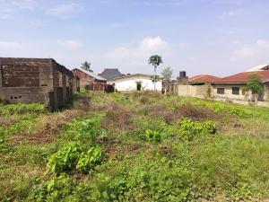 Residential Land for sale Airport Road Alakia Behinde Adelowo Street Alakaia Ibadan Alakia Ibadan Oyo