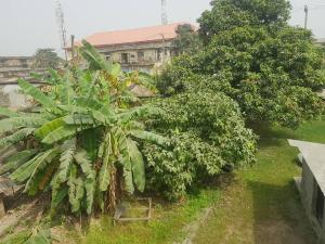 Residential Land Land for sale along Cardoso street Kirikiri Town Lagos  Kirikiri Apapa Lagos