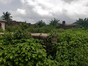 Land for sale Ayetoro ogun state Ayobo Ipaja Lagos