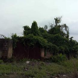 Mixed   Use Land Land for sale ... Agric Ikorodu Lagos