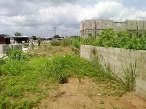 Mixed   Use Land Land for sale Port Harcourt Road off Avu junction Owerri. Owerri Imo