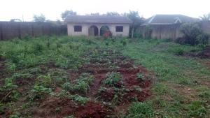 2 bedroom Blocks of Flats for sale Destiny Estate Sango Abeokuta Express Way Opposite Sonal Brewery Abule Egba Abule Egba Lagos