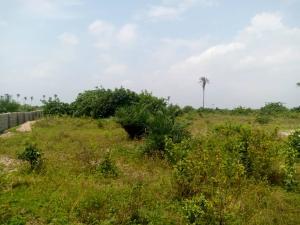 Land for sale Gioni Estate, Lakowe Ibeju-Lekki Lagos