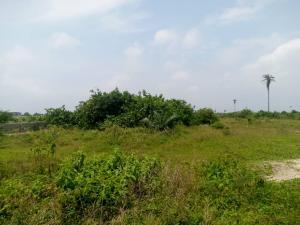 Land for sale Behind General Hospital, Akodo Ibeju-Lekki Lagos