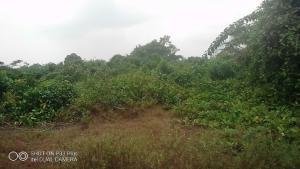 Land for sale Majoda Epe Road Epe Lagos