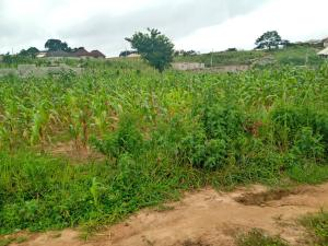 Serviced Residential Land Land for sale Along the tarred road  Kubwa Abuja