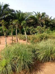 Mixed   Use Land Land for sale Idiroko Town Yewa Ogun