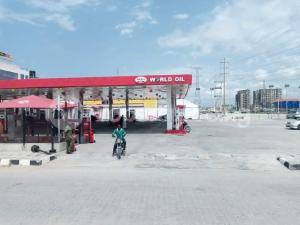 Mixed   Use Land Land for sale LEKKI / EPE EXPRESSWAY BEFORE CHEVRON BESIDE WORLD OIL FILLING STATION Ilasan Lekki Lagos