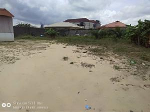 Commercial Land Land for sale directly along ogombo road by abraham adesanya Ogombo Ajah Lagos
