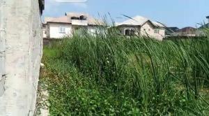 Mixed   Use Land Land for sale Twin Lake, Lekki Peninsula Lekki Phase 2 Lekki Lagos