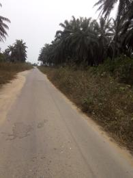 Mixed   Use Land Land for sale Just before Obehie junction, Abia State Ukwa West Abia
