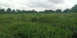 Industrial Land Land for sale Adatan Abeokuta Ogun