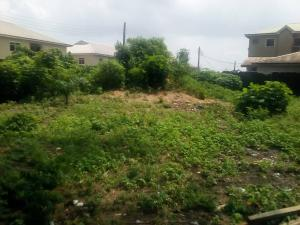 Mixed   Use Land Land for sale 2nd toll gate in between lekki conservation center and orchid road Lekki Lagos