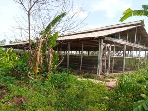 Mixed   Use Land Land for sale Ajiboro Village Ido Eleyele Ibadan Oyo