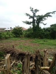 Commercial Land for sale Food Co Jericho Gra Jericho Ibadan Oyo