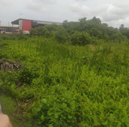 Commercial Land Land for sale Amuwo Odofin Industrial Estate Amuwo Odofin Amuwo Odofin Lagos