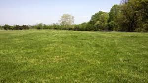 Land for sale Temidire Ibarapa Oyo