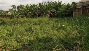 Mixed   Use Land Land for sale Osongama estate Uyo Akwa Ibom