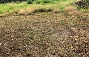 Residential Land Land for sale 2nd Avenue Ikoyi 2nd Avenue Extension Ikoyi Lagos