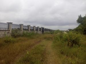 Land for sale Eleju Ajah Ibeju-Lekki Lagos