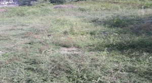 Land for sale Idu Abuja