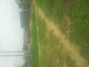 Land for rent Elerangbe Ajah Ibeju-Lekki Lagos