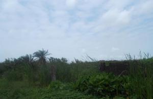 Land for sale Glorious Estate Badore Ajah Lagos