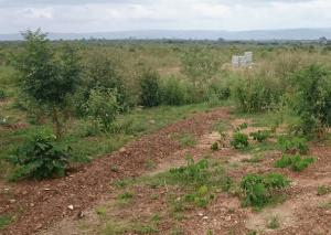 Mixed   Use Land Land for sale ASOKORO Extention  Asokoro Abuja