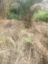 Land for sale Shasha Shasha Alimosho Lagos