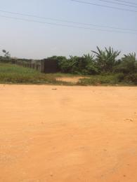Mixed   Use Land Land for sale Directly Facing Oretta Road By Mr Biggs Bus Stop Igbogbo Ikorodu Lagos