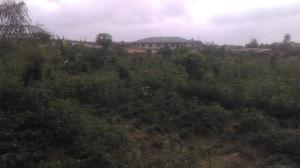 Mixed   Use Land Land for rent Kola bustop Alagbado Abule Egba Lagos