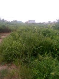 Land for sale Ifako Ijaiye Kollinton Ifako Agege Lagos