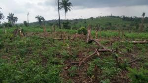 Land for sale Laniba Ajibode Ibadan Oyo
