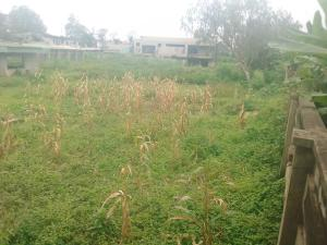 Residential Land Land for sale  New Bodija Estate Bodija Ibadan Oyo