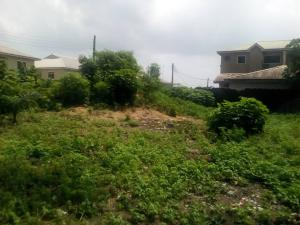 Residential Land Land for sale inside peninsula garden estate behind blenco supermarket Sangotedo Ajah Lagos