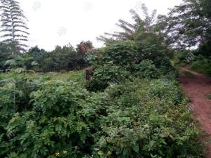 Land for sale Alagbaka extention  Akure Ondo