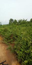 Commercial Land Land for sale Olosun area akobo ojurin ibadan Olorunda Lagelu Oyo
