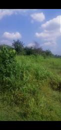 Mixed   Use Land Land for sale Eziobodo road, Ihiagwa, Owerri west Owerri Imo