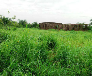 Mixed   Use Land Land for sale New haven Azikoro town Yenegoa Bayelsa