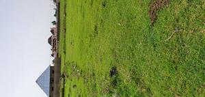 Residential Land Land for sale Zaria/Kano road Dogarawa Zaria Zaria Kaduna