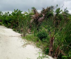 Land for sale Fidiso Estate, Abijo Ajah Lagos