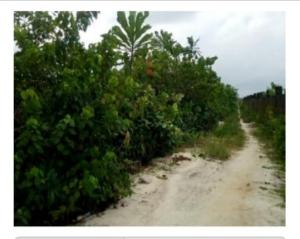 Residential Land Land for sale Fidiso Estate, Before Abijo Abijo Ajah Lagos